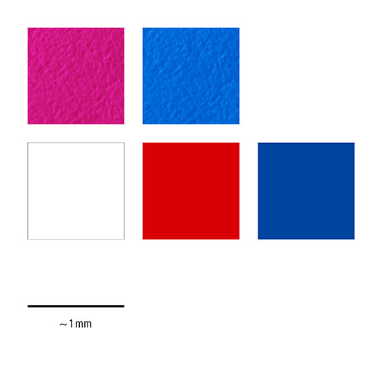 61-djt4 colours